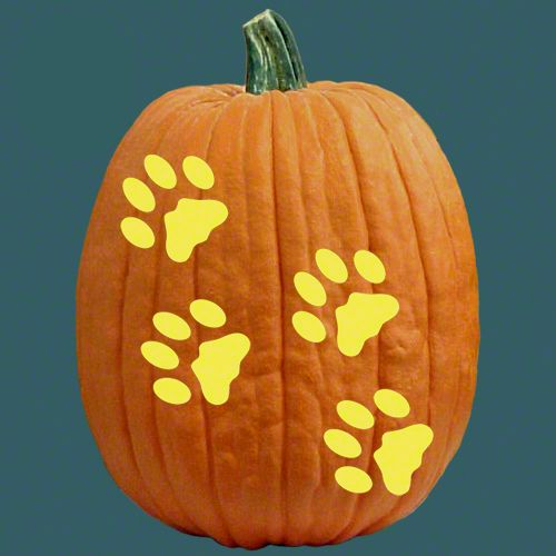 """Image for """"Howling for Halloween"""" Pumpkin Carving with Brutus webinar"""