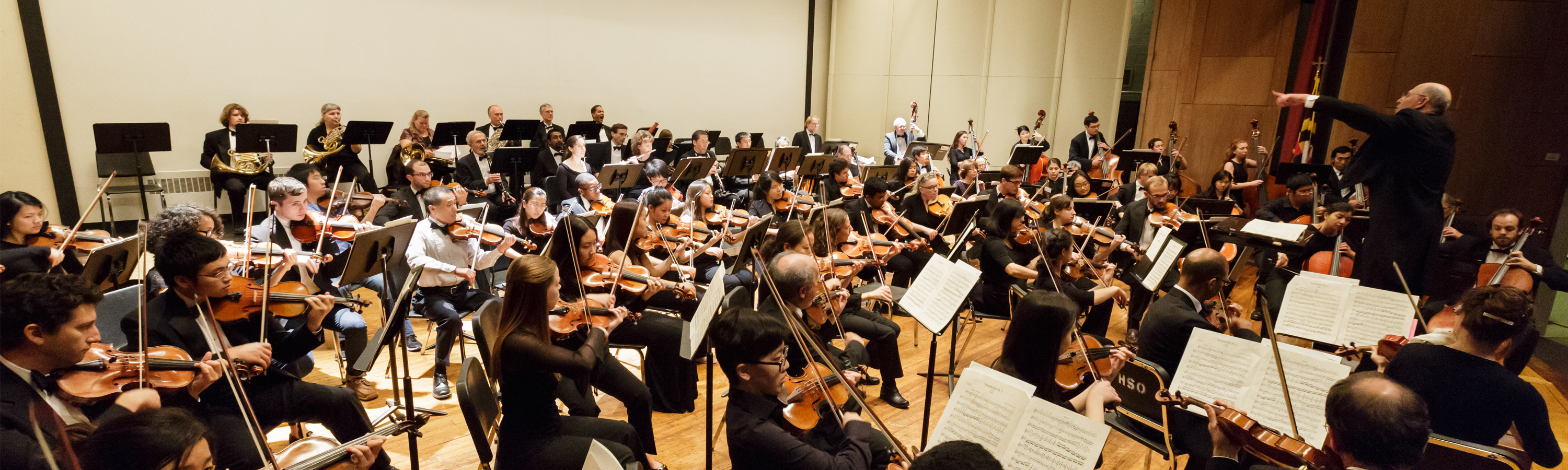 Image for Hopkins Symphony Orchestra Evenings Part II - Symphonie Fantastique: Pipe Dreams and Obsessions webinar