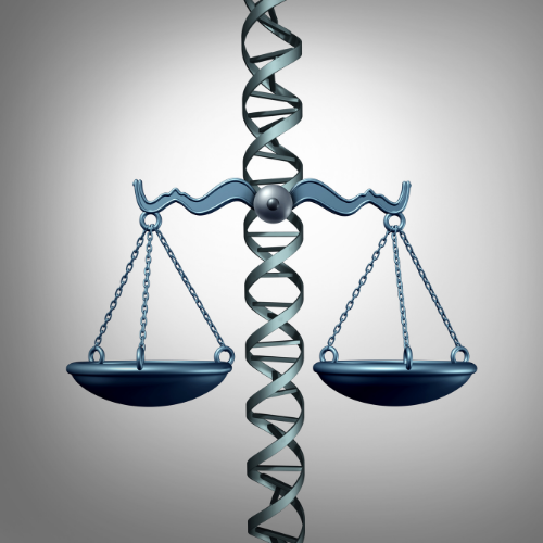 Image for Bioethics and the Law Today: A Panel Discussion webinar