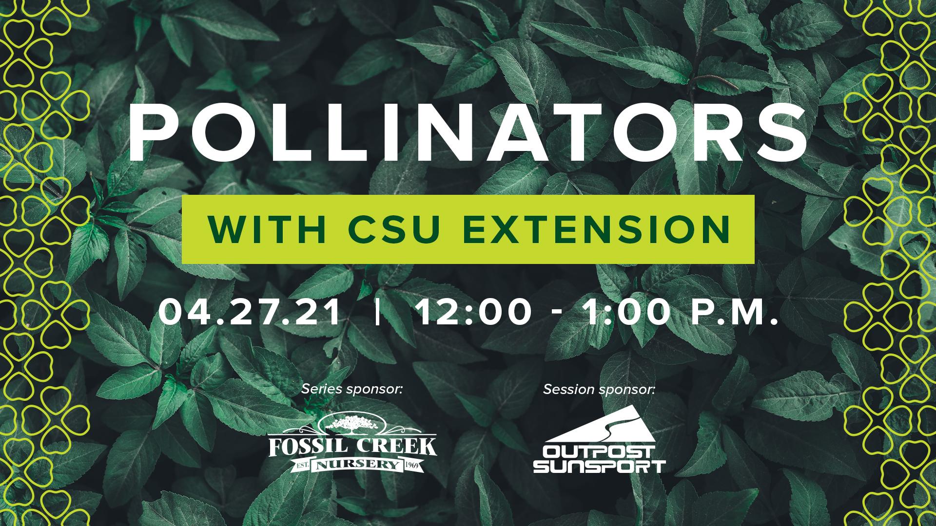 Image for Gardening Series with CSU Extension: Pollinators webinar