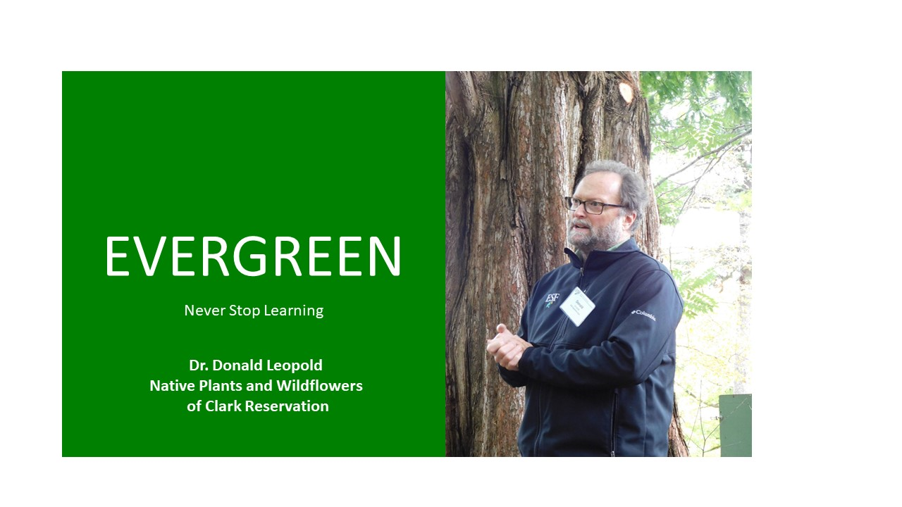 Image for ESF PRESENTS:  Native Plants and Wildflowers of Clark Reservation with Dr. Don Leopold webinar