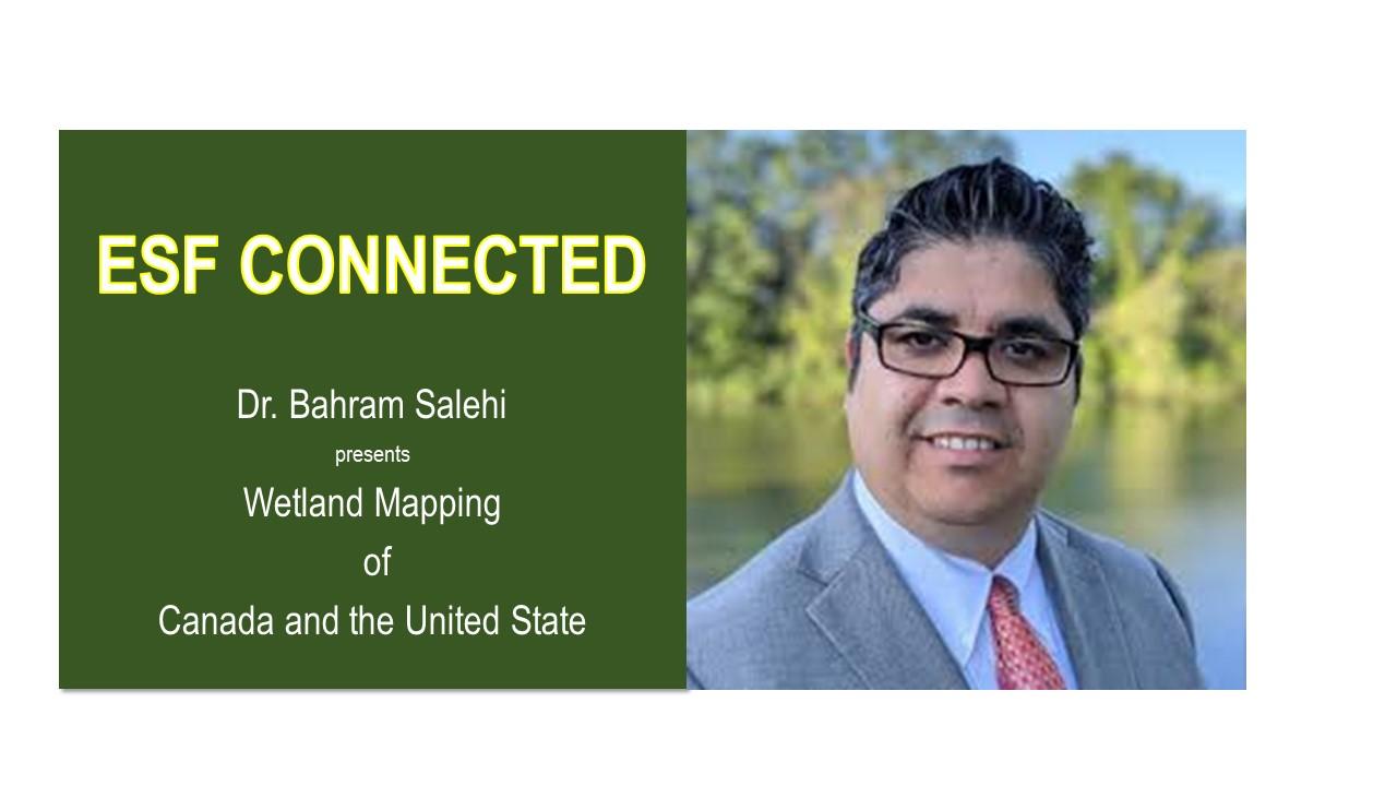 Image for ESF PRESENTS:   Dr. Bahram Salehi webinar
