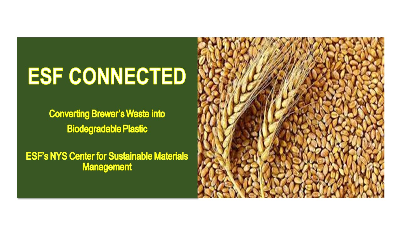 Image for ESF PRESENTS:  Converting Brewer's Waste into Biodegradable Plastic webinar